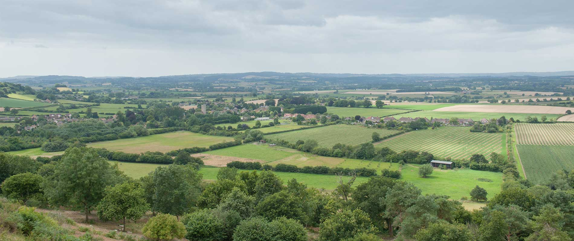 View of green fields and Somerset countryside